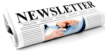 Newsletter portal afaceri