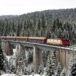 Romexpo Targul de Turism al Romaniei Travel Train