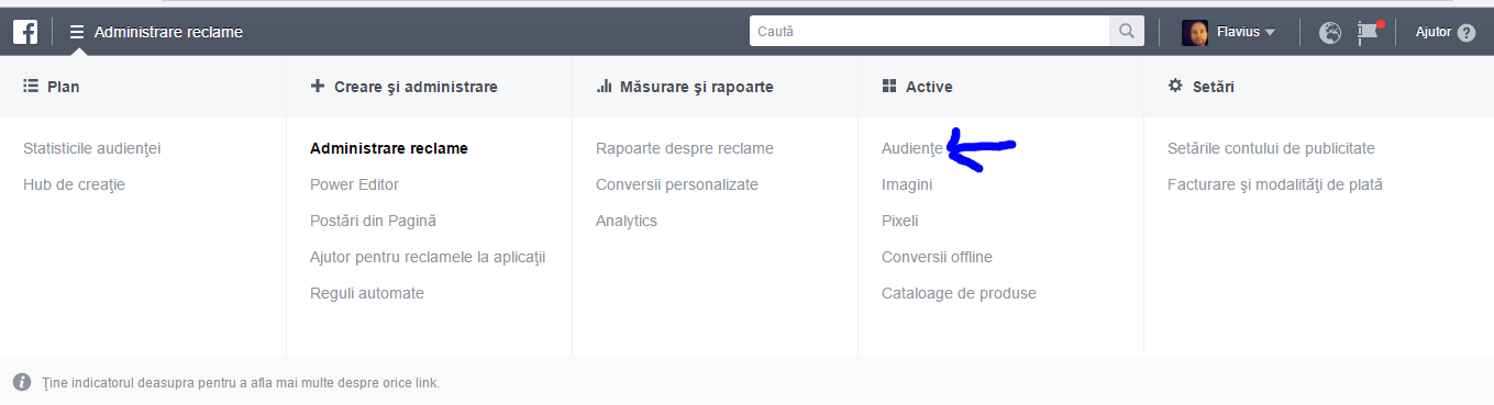 Facebook Ads Audiente Ghid
