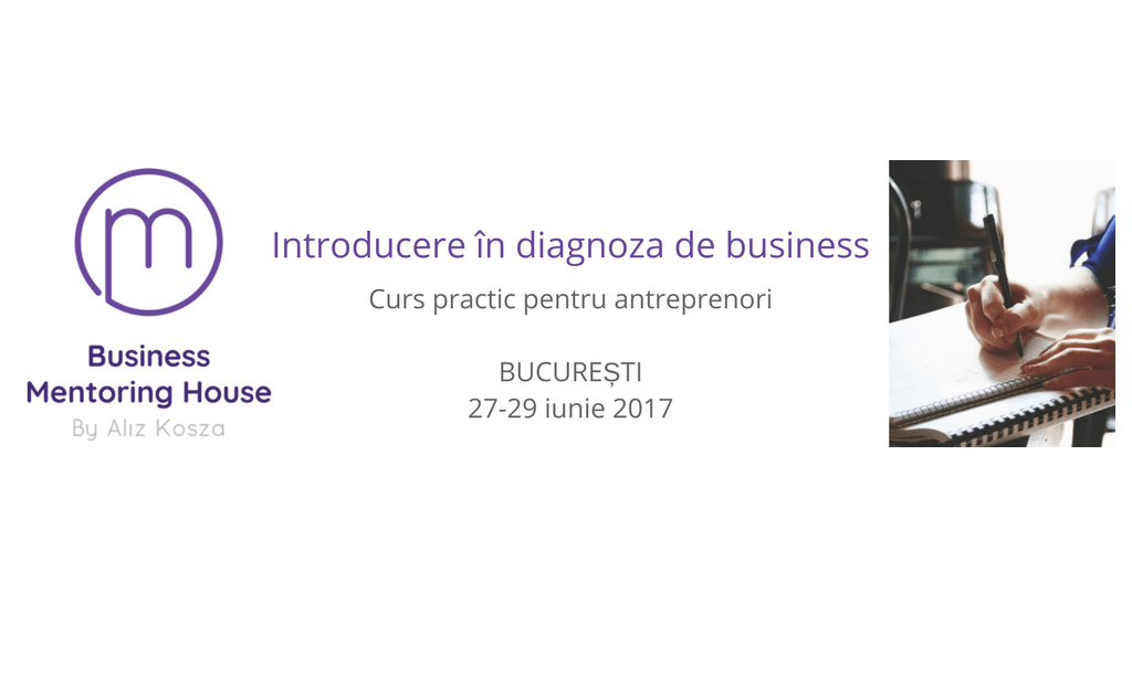 Introducere in tehnici de diagnoza de business