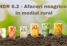 PNDR 6.2 afaceri neagricole in mediul rural - infiintare activitati neagricole